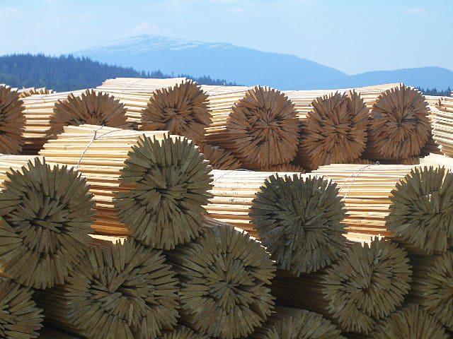 drewno na tle gór